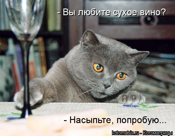 Котоматрица: - Вы любите сухое вино? - Насыпьте, попробую...