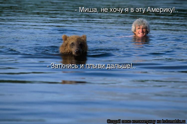 Котоматрица: - Миша, не хочу я в эту Америку!.. - Заткнись и плыви дальше!..