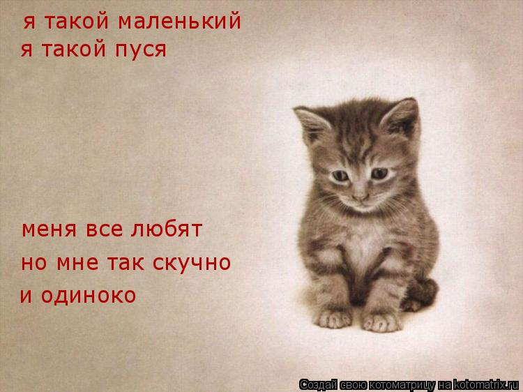 Котоматрица: я такой маленький я такой пуся меня все любят но мне так скучно и одиноко