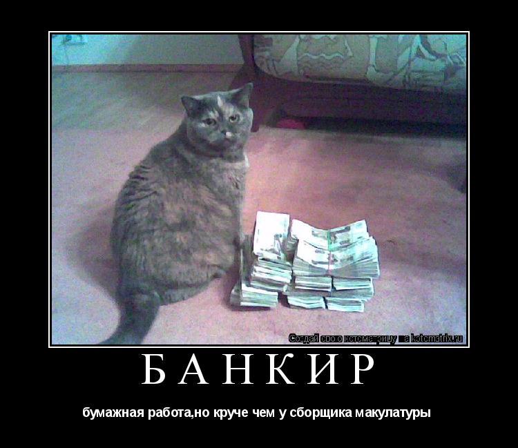 Котоматрица: банкир бумажная работа,но круче чем у сборщика макулатуры
