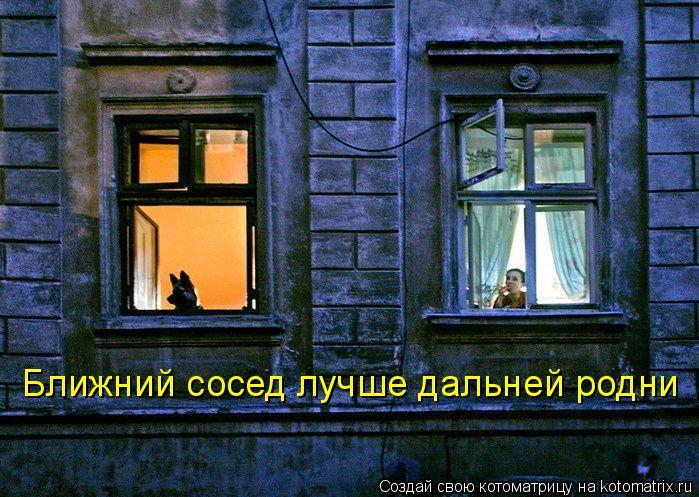Котоматрица: Ближний сосед лучше дальней родни