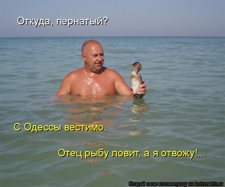 Котоматрица: Отец рыбу ловит, а я отвожу!.. Откуда, пернатый? С Одессы вестимо.