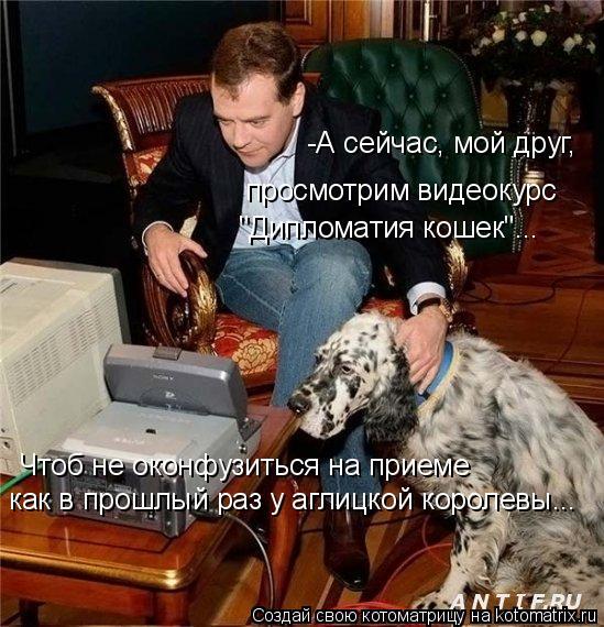 """Котоматрица: -А сейчас, мой друг, просмотрим видеокурс """"Дипломатия кошек""""... Чтоб не оконфузиться на приеме как в прошлый раз у аглицкой королевы..."""