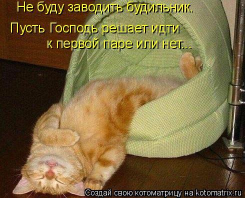 Котоматрица: Не буду заводить будильник. Пусть Господь решает идти  к первой паре или нет...