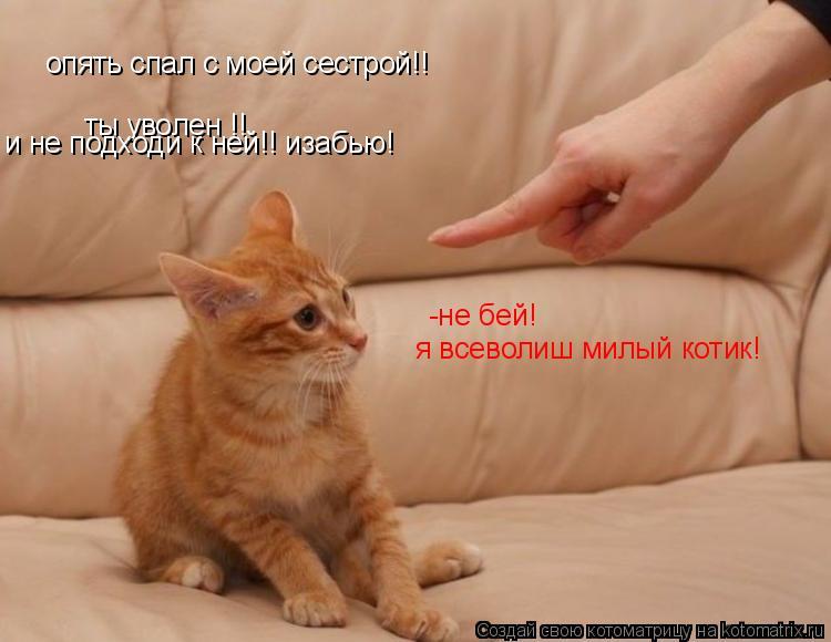 Котоматрица: опять спал с моей сестрой!! ты уволен !! и не подходи к ней!! изабью! -не бей!  я всеволиш милый котик!