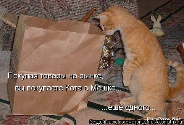 Котоматрица: Покупая товары на рынке,  вы покупаете Кота в Мешке... ...еще одного...