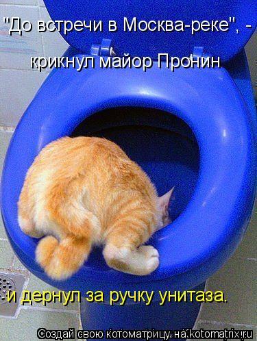 "Котоматрица: ""До встречи в Москва-реке"", -  крикнул майор Пронин и дернул за ручку унитаза."