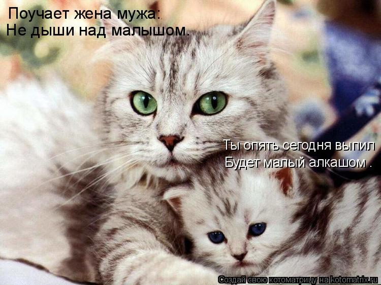 Котоматрица: Поучает жена мужа: «Не дыши над малышом. Ты опять сегодня выпил Будет малый алкашом».