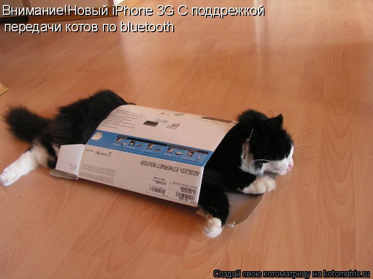 Котоматрица: Внимание!Новый iPhone 3G С поддрежкой  передачи котов по bluetooth