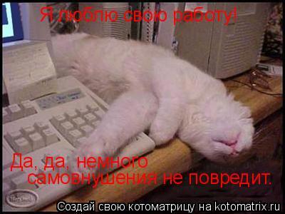 Котоматрица: Я люблю свою работу! Да, да, немного самовнушения не повредит. Да, да, немного   самовнушения не повредит.