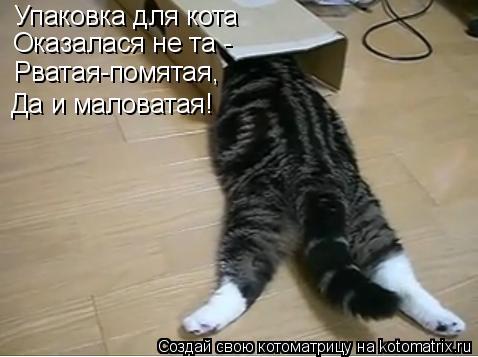 Котоматрица: Упаковка для кота Оказалася не та -  Рватая-помятая, Да и маловатая!