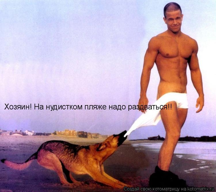 Котоматрица: Хозяин! На нудистком пляже надо раздваться!!