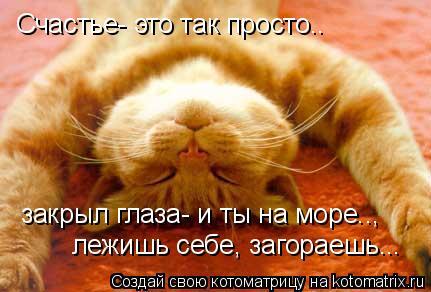 Котоматрица: Cчастье- это так просто.. закрыл глаза- и ты на море..,  лежишь себе, загораешь...