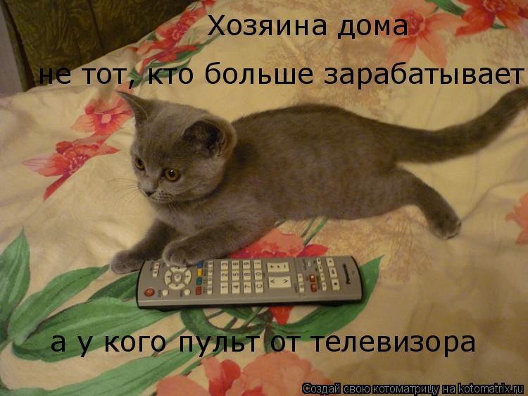 Котоматрица: а у кого пульт от телевизора Хозяина дома  не тот, кто больше зарабатывает