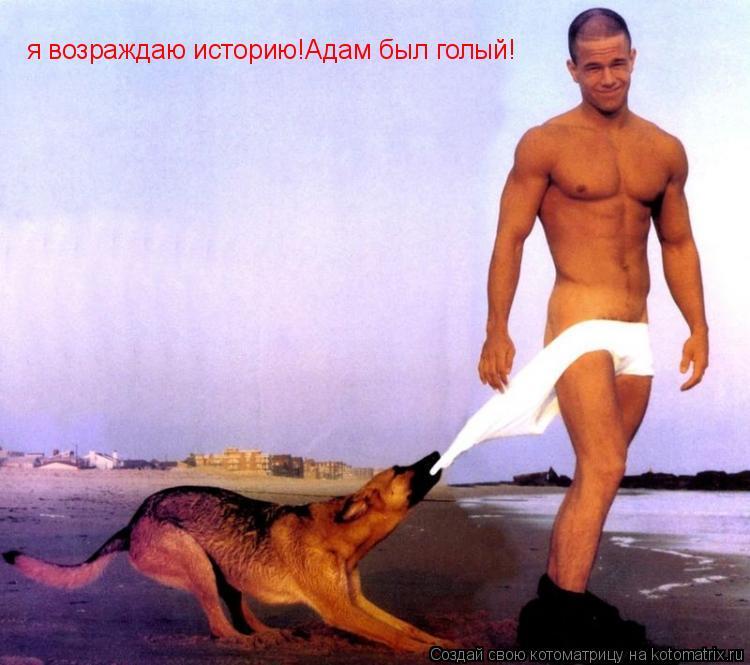 Котоматрица: я возраждаю историю!Адам был голый!