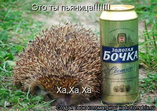 Котоматрица: Это ты пьяница!!!!!!! Ха,Ха,Ха