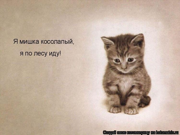 Котоматрица: Я мишка косолапый, я по лесу иду!