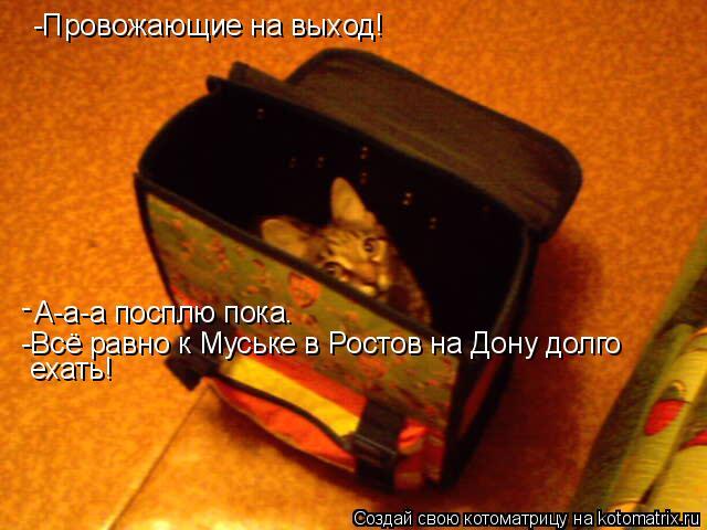 Котоматрица: -Провожающие на выход! А-а-а посплю пока. - -Всё равно к Муське в Ростов на Дону долго  ехать!