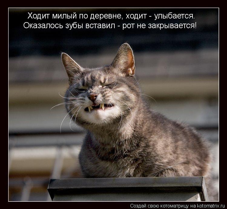 Котоматрица: Ходит милый по деревне, ходит - улыбается. Оказалось зубы вставил - рот не закрывается!