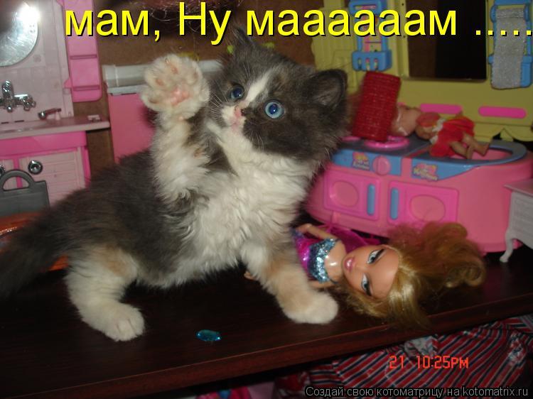 Котоматрица: мам, Ну маааааам .....