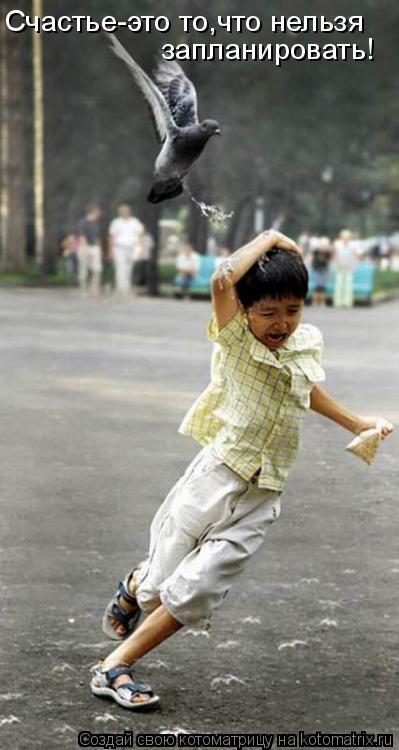 Котоматрица: Счастье-это то,что нельзя запланировать!