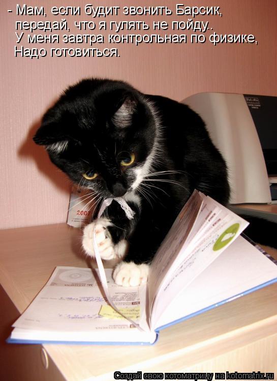 Котоматрица: - Мам, если будит звонить Барсик,  передай, что я гулять не пойду.. У меня завтра контрольная по физике, Надо готовиться.