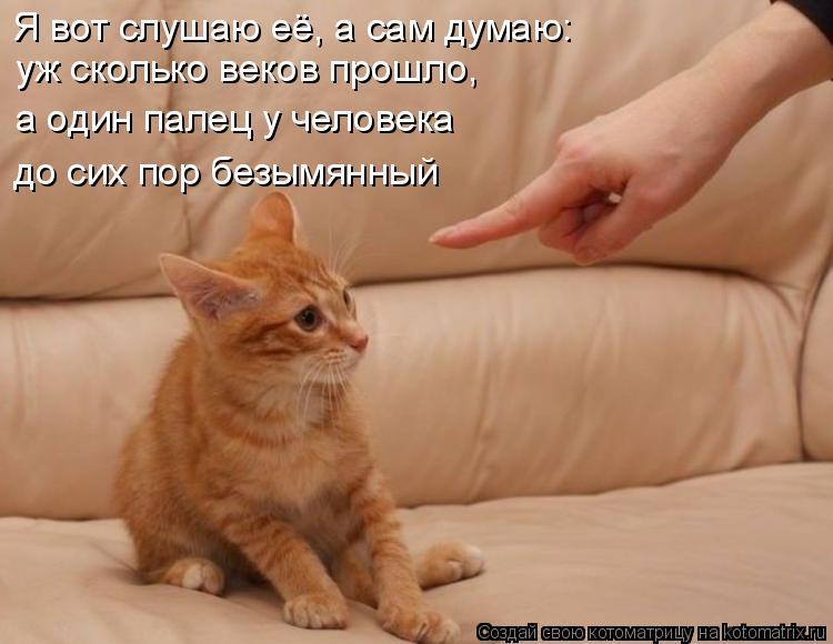 Котоматрица: Я вот слушаю её, а сам думаю:  уж сколько веков прошло,  а один палец у человека  до сих пор безымянный