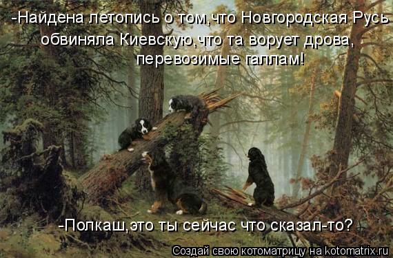 Котоматрица: -Найдена летопись о том,что Новгородская Русь  обвиняла Киевскую,что та ворует дрова,  перевозимые галлам!  -Полкаш,это ты сейчас что сказал-