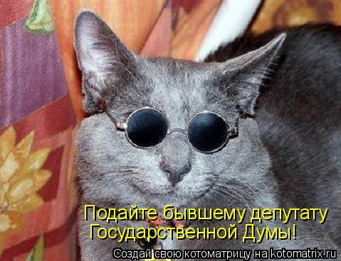 Котоматрица: Подайте бывшему депутату Государственной Думы!