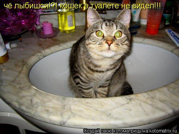Котоматрица: чё лыбишся!?! кошек в туалете не видел!!!