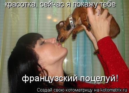 Котоматрица: красотка, сейчас я покажу тебе  французский поцелуй!