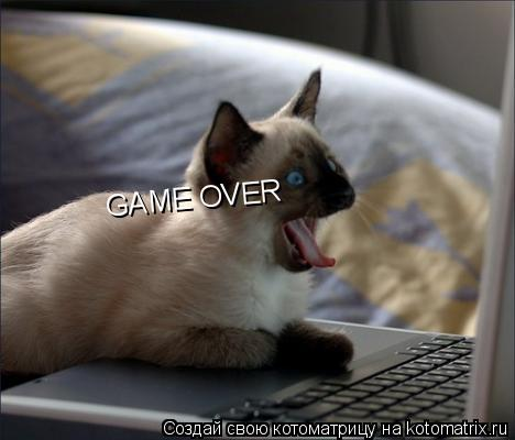Котоматрица: GAME OVER GAME OVER