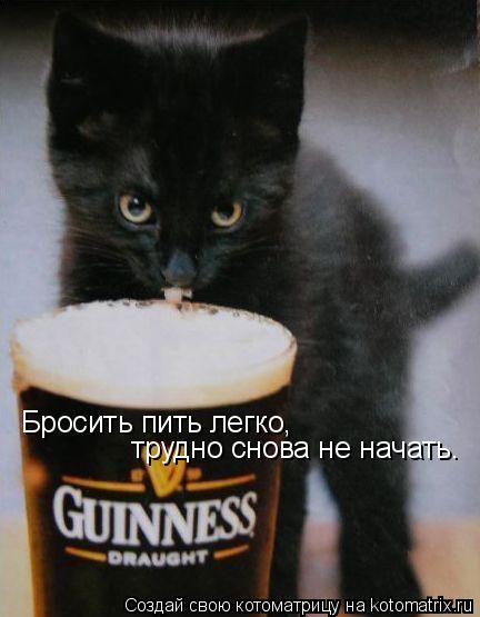 Котоматрица: Бросить пить легко,  трудно снова не начать.