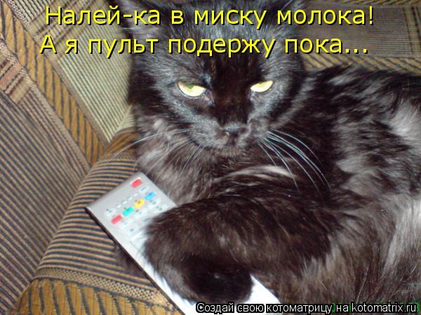 Котоматрица: Налей-ка в миску молока! А я пульт подержу пока...