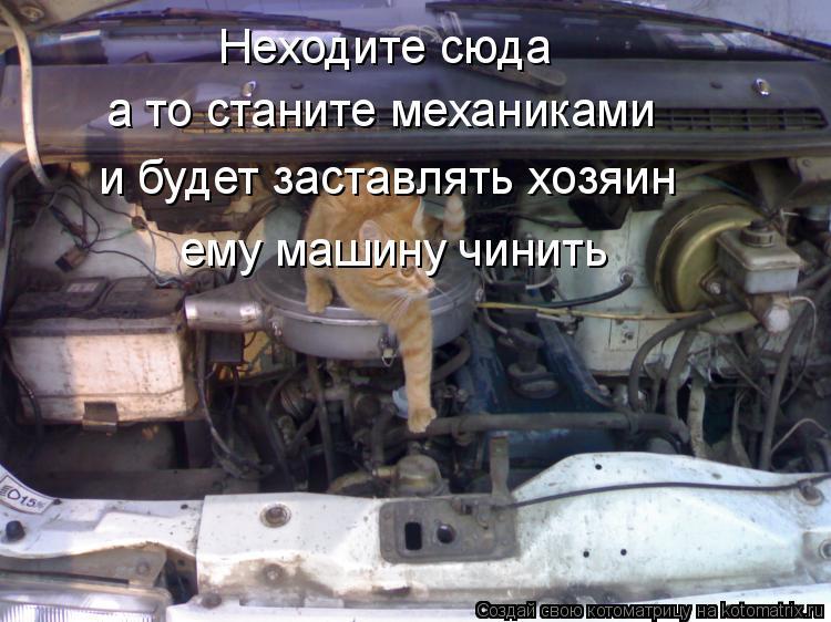 Котоматрица: Неходите сюда а то станите механиками и будет заставлять хозяин ему машину чинить