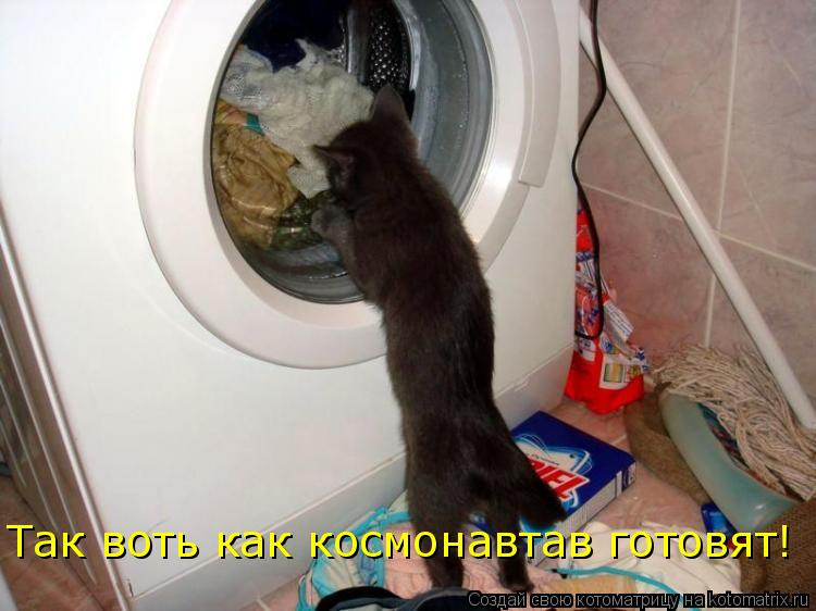 Котоматрица: Так воть как космонавтав готовят!