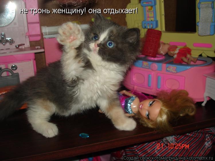 Котоматрица: не тронь женщину! она отдыхает!