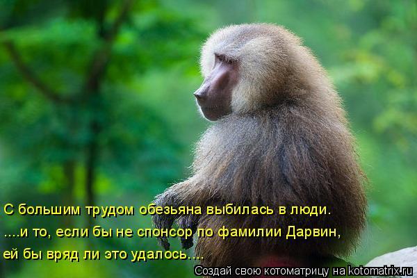 Котоматрица: С большим трудом обезьяна выбилась в люди. ....и то, если бы не спонсор по фамилии Дарвин,  ей бы вряд ли это удалось....