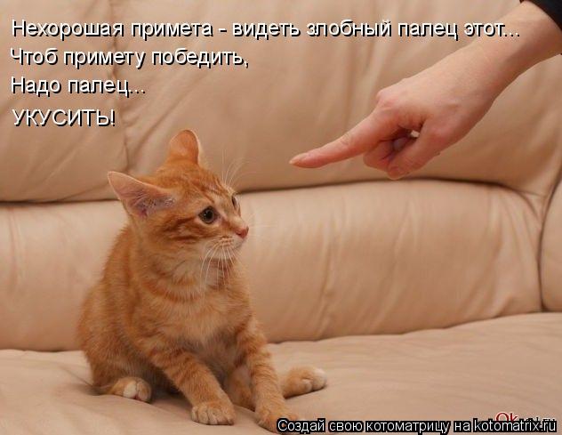 Котоматрица: Нехорошая примета - видеть злобный палец этот... Чтоб примету победить, Надо палец... УКУСИТЬ!