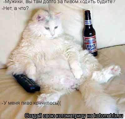 Котоматрица: -Мужики, вы там долго за пивом ходить будите? -Нет, а что? -У меня пиво кончилось((