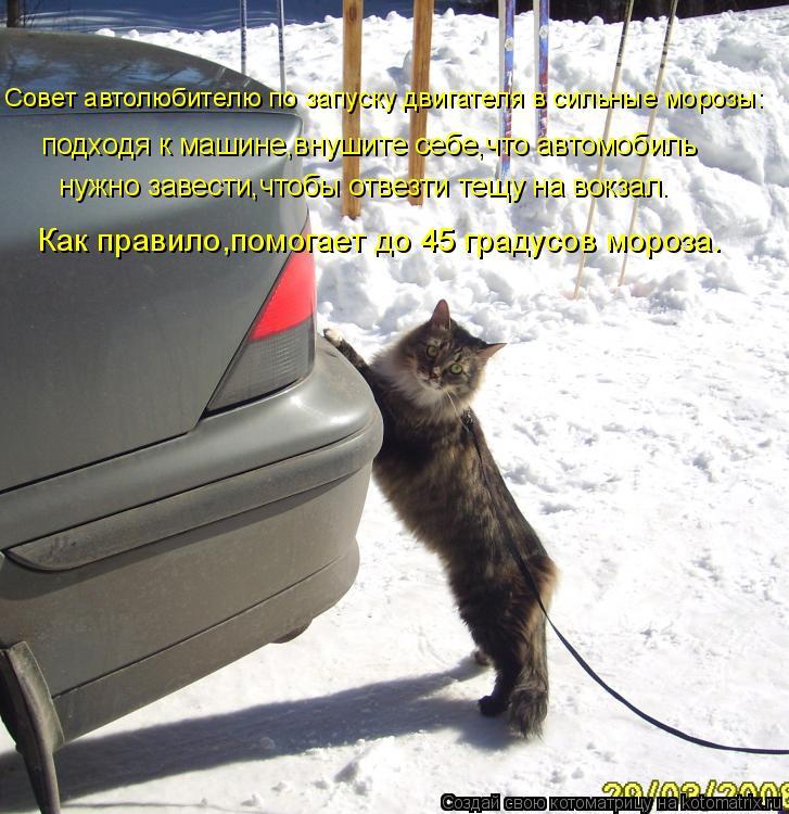 Котоматрица: Совет автолюбителю по запуску двигателя в сильные морозы: подходя к машине,внушите себе,что автомобиль нужно завести,чтобы отвезти тещу на