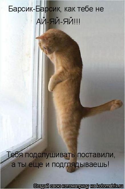 Котоматрица: Барсик-Барсик, как тебе не АЙ-ЯЙ-ЯЙ!!! Тебя подслушивать поставили,  а ты еще и подглядываешь!
