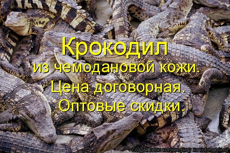 Котоматрица: Крокодил  из чемодановой кожи.  Цена договорная.  Оптовые скидки.
