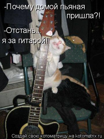 Котоматрица: -Почему домой пьяная  пришла?! -Отстань... я за гитарой!