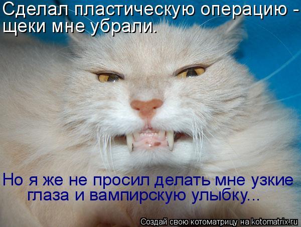 Котоматрица: Сделал пластическую операцию - щеки мне убрали. Но я же не просил делать мне узкие глаза и вампирскую улыбку...