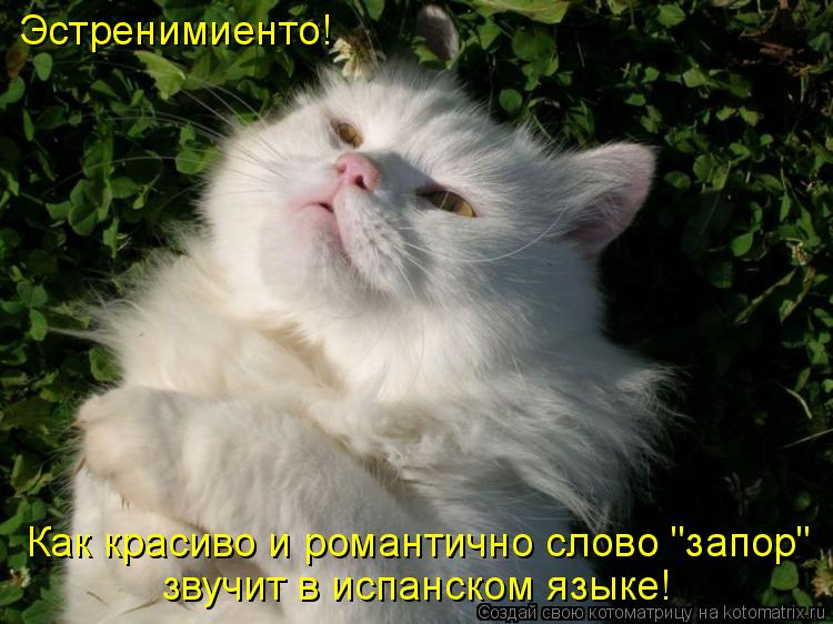 Эстренимиенто!  Как красиво и романтично слово