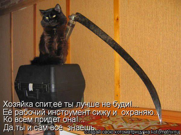Котоматрица: Хозяйка спит,её ты лучше не буди!... Её рабочий инструмент сижу и  охраняю... Ко всем придет она!... Да,ты и сам всё  знаешь...