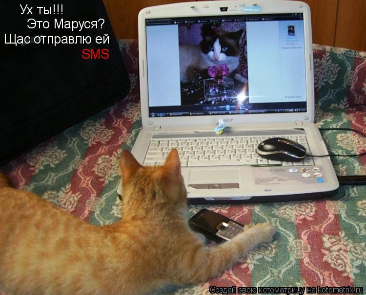 Котоматрица: Ух ты!!! Это Маруся? Щас отправлю ей SMS