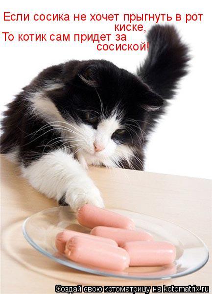 Котоматрица: Если сосика не хочет прыгнуть в рот То котик сам придет за  сосиской! киске,