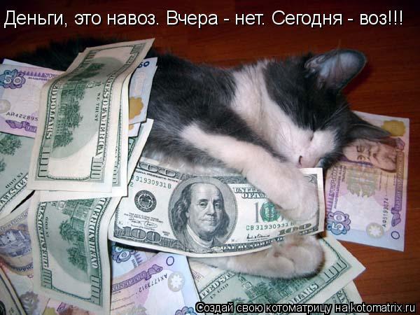 Котоматрица: Деньги, это навоз. Вчера - нет. Сегодня - воз!!!